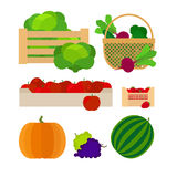 Vegetables and fruits farm baskets Stock Images