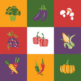 Vegetables and Fruits icons set and signs Royalty Free Stock Photos