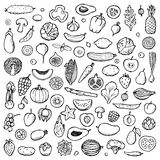 Vegetables and fruits Set hand drawn doodle elements. Vector illustration for backgrounds, web design, design elements, textile prints, covers, posters, menu stock illustration