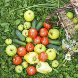 Vegetables and fruits spilled from basket on the grass. Food. Stock Photo