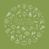 Vegetables and fruits thin icons Stock Photos