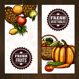 Vegetables And Fruits Vertical Banners. With pineapple lemon pear apple pumpkin carrot cucumber and tomato vector illustration Royalty Free Stock Images