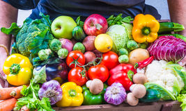 Vegetables and fruits. Stock Image