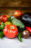 Vegetables garden harvest with tomatoes Royalty Free Stock Photo