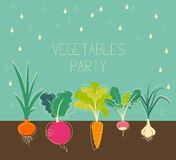 Vegetables garden Royalty Free Stock Image