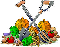 Vegetables and gardening tools Stock Photography