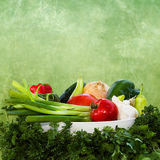 Vegetables Graphic/Photo Stock Images