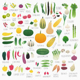 Food Vol.2: Vegetables Stock Image