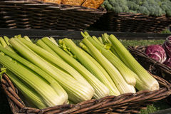 Vegetables. Green vegetables in the brown basket on sunny day Stock Photos