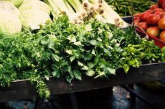 Vegetables and greens on market Royalty Free Stock Photo