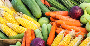 Vegetables group Royalty Free Stock Image