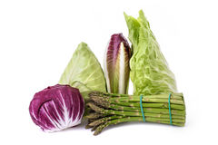 Vegetables group isolated. Chicory asparagus radicchio end salade isolated on white Royalty Free Stock Photos
