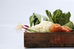 Vegetables group Royalty Free Stock Photography
