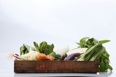 Vegetables group Royalty Free Stock Images