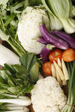 Vegetables group Stock Image