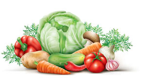 Vegetables group Stock Photography