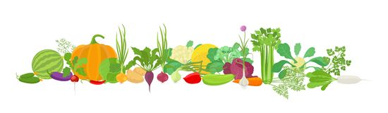 Free Vegetables Harvest Banner Collage. Popular Agricultural Plant Set. Vector Farm Plants Bunch Healthy Food. Site Header Horizontal Royalty Free Stock Images - 143720669