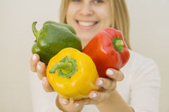 Vegetables harvest Royalty Free Stock Photography