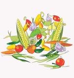 Vegetables Harvest Royalty Free Stock Image