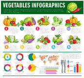 Vegetables healthy food vector infographics Royalty Free Stock Photography