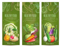 Vegetables healthy vegetarian food sketch banners Royalty Free Stock Photo