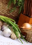 Vegetables and herbs before cooking stock photography