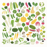 Vegetables and Herbs Royalty Free Stock Photos