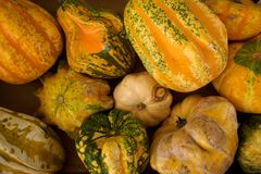 Vegetables and herbs on the market Stock Photo