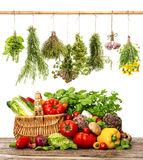 Vegetables and herbs. shopping basket. healthy food. Vegetables and herbs on white background. organic diary products. shopping basket. healthy food concept Royalty Free Stock Images