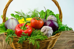 Vegetables and herbs in a wicker basket Stock Images