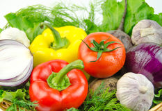 Vegetables and herbs in a wicker basket Royalty Free Stock Photo