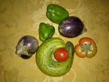 Vegetables from home garden. Cucumber, eggplant, capsicum and tomato from kitchen garden Stock Image