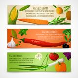 Vegetables horizontal banners Royalty Free Stock Photography