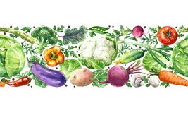 Free Vegetables Horizontal Seamless Pattern Stock Images - 113323604