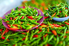 Vegetables. Hot Bird's Eye Chili Peppers. Healthy Food Ingredi Royalty Free Stock Photo