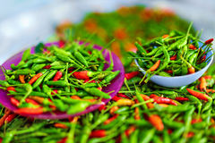 Vegetables. Hot Bird's Eye Chili Peppers. Healthy Food Ingredi Stock Photos