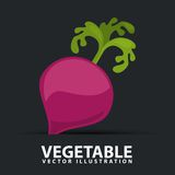 Vegetables icon Royalty Free Stock Photo