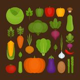 Vegetables icon set. Organic and healthy food. Flat style, vecto Royalty Free Stock Photo