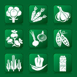 Vegetables icons Stock Images