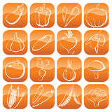 Vegetables icons. 16 glossy vegetables icons - line art Royalty Free Stock Images