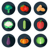 Vegetables icons in flat style. Set of food icons with long shadows. Vector illustration Royalty Free Stock Photo