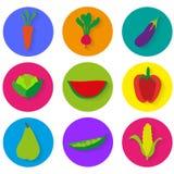 Vegetables icons  graphics. Illustration set design Stock Photos