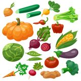 Vegetables Icons Set Royalty Free Stock Images