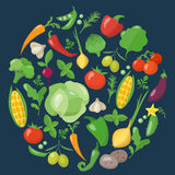 Vegetables icons set in flat style Royalty Free Stock Photos