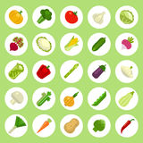 Vegetables Icons set on flat style White Background. Vegetables Icons set on flat style. Vector Stock Images