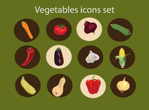 Vegetables icons set ,healthy food. Vegetables icons set on the green background Stock Images