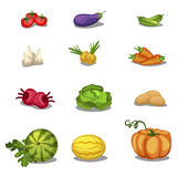Vegetables icons set, vector illustration. Food. Vegetables icons big set, vector illustration Stock Photography