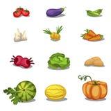 Vegetables icons set, vector illustration. Food. Vegetables icons big set, vector illustration Stock Illustration