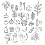 Vegetables icons. Vector Illustration. Stock Photo