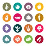 Vegetables. Icons white on colorful circles Stock Photos